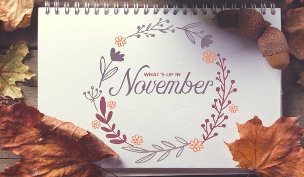Cosa Imparerà Ogni Segno Zodiacale a Novembre 2019