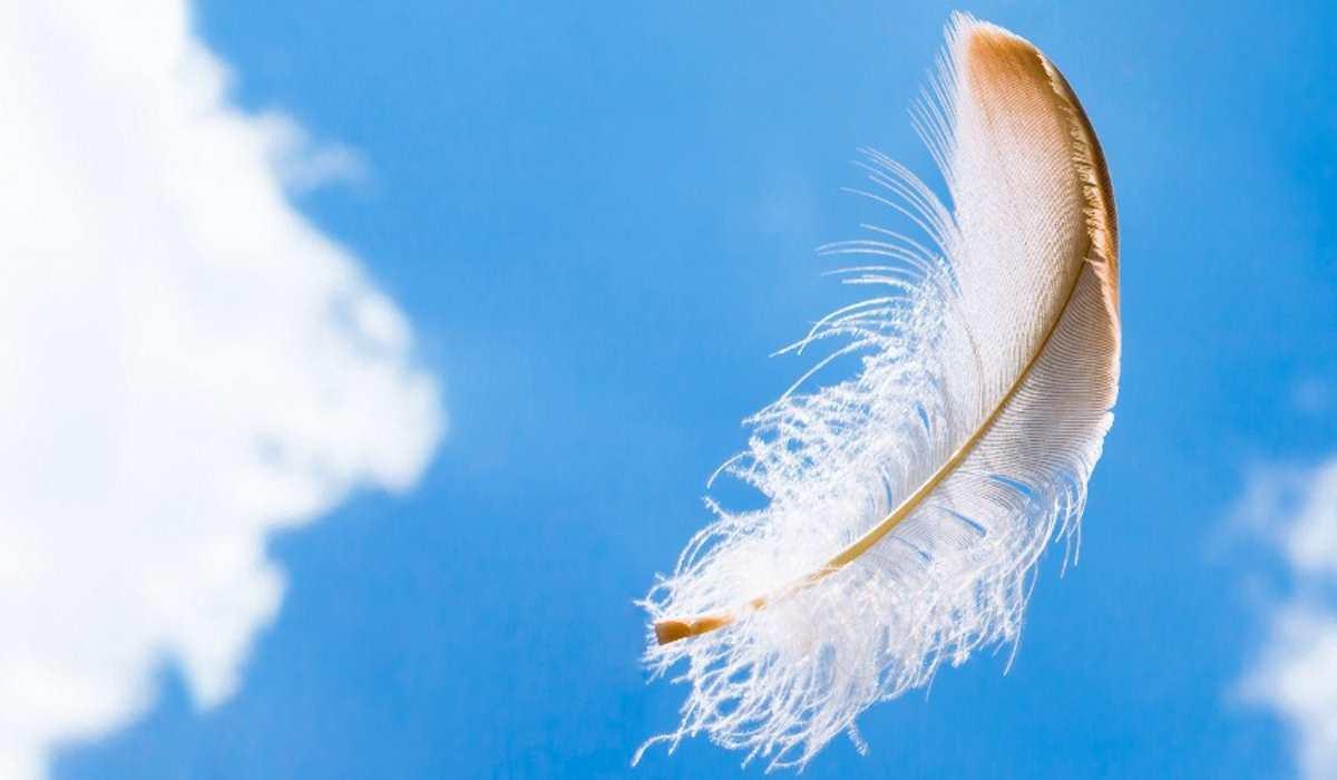 5 Segni che i Nostri Angeli ci Inviano per Avvisarci di un Pericolo