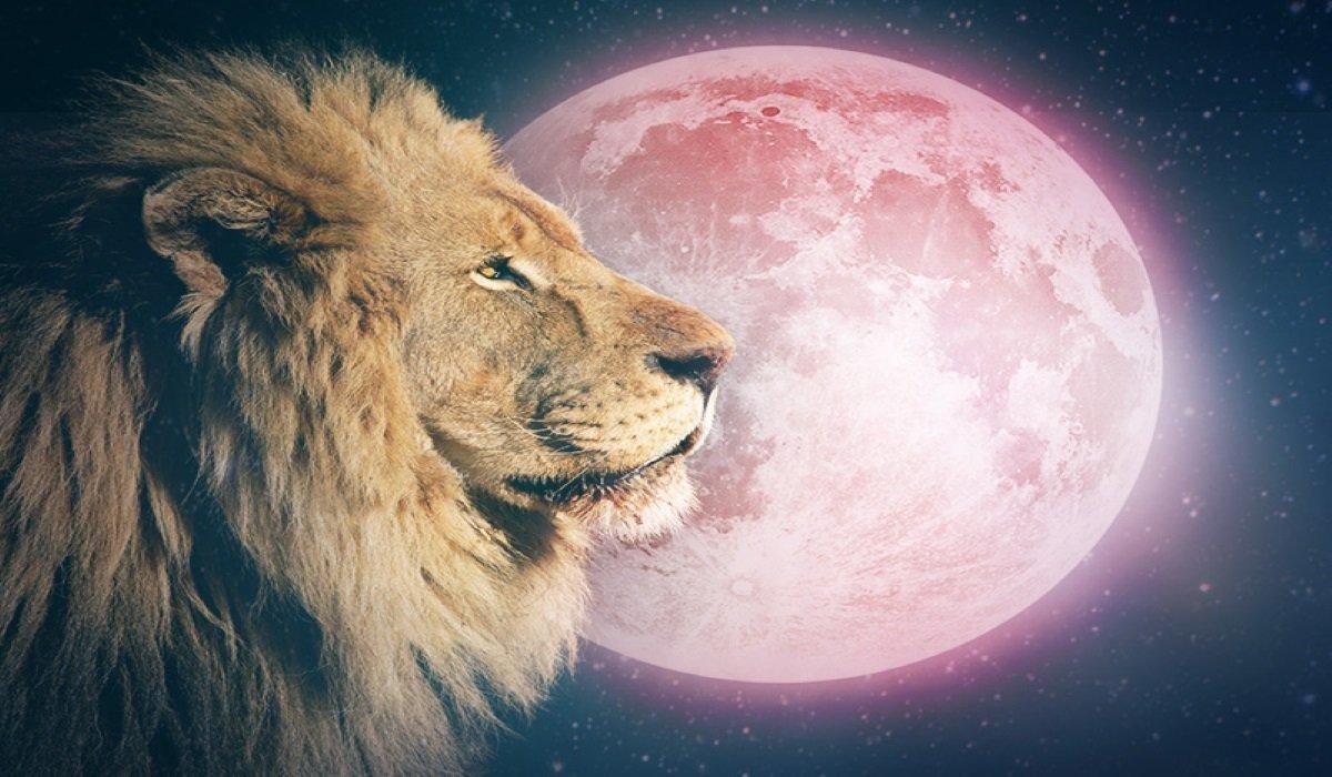 Luna Piena in Leone il 9 Febbraio 2020 – Abbraccia il Percorso che Dovevi Percorrere