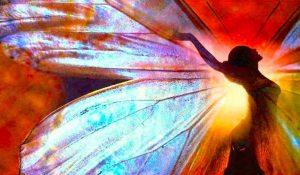Le 5 Fasi della Trasformazione Spirituale
