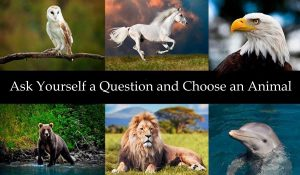Ponetevi una Domanda e Scegliete un Animale: Vi Darà la Risposta che State Cercando