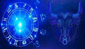 Come Stagione del Toro 2020 ti Influenzerà, Secondo il Tuo Segno Zodiacale